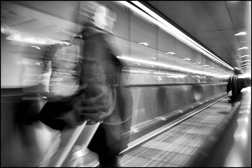 fellow-passengers-116